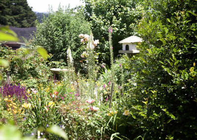 Dalblair-Bed-and-Breakfast-Gardens8